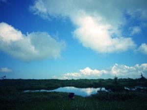 湿原ですので地面は水を含んだ泥炭地となっています。 長靴か防水仕様の登山靴がいいでしょう。