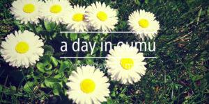 a_day_in_oumu160523
