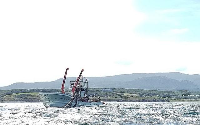 大漁網投入