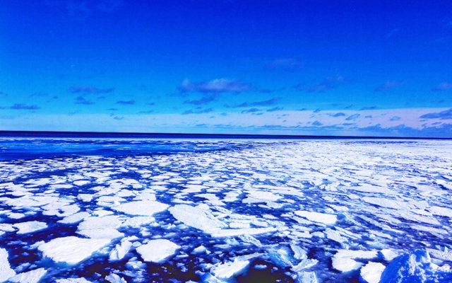 幌内での流氷