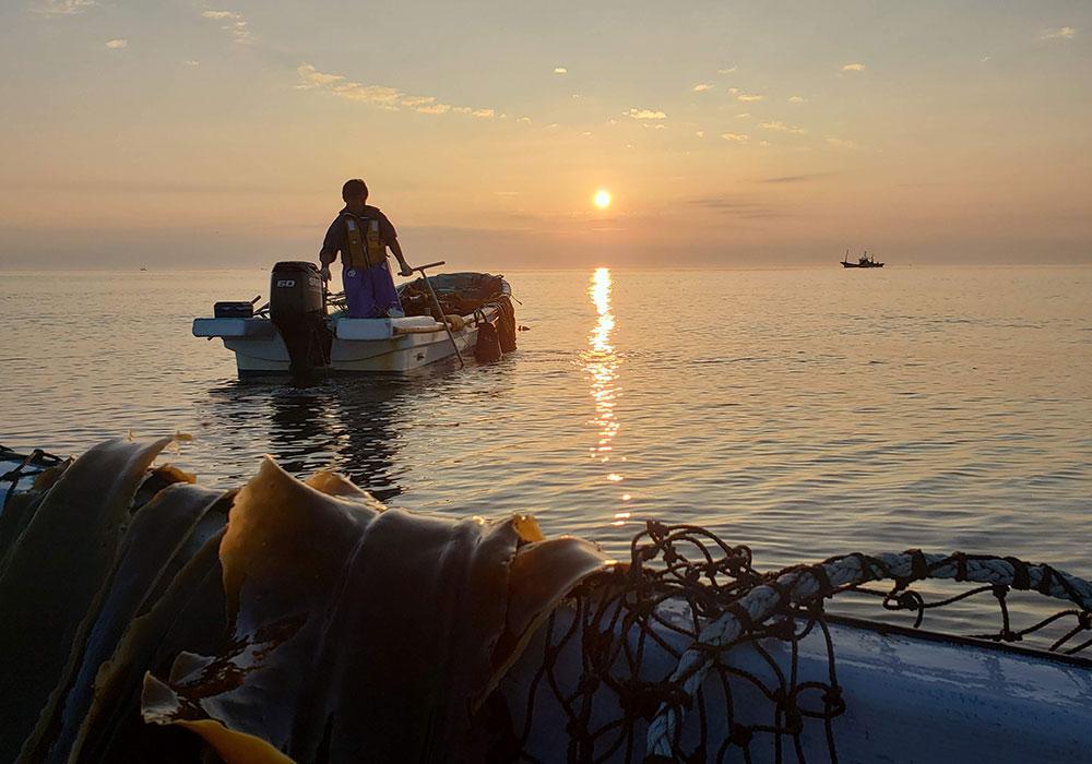 建設業昆布漁の朝